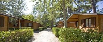 Picture of Bosco Verde Camping in Viareggio