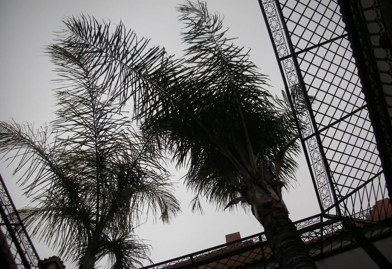 奧瑟菲納庭院飯店, 馬拉喀什, 庭院