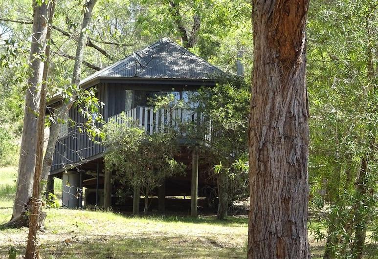 Barrington Tops Nest, Бендон-Гров, Домик (Eagle Wildernest), Номер