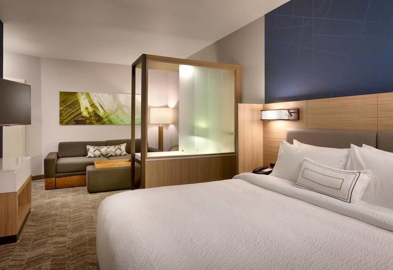 SpringHill Suites by Marriott Idaho Falls, Idaho Falls