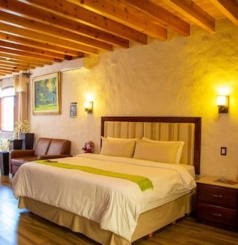 Queretaro bölgesindeki Hotel Boutique La Casa de los dos Leones resmi