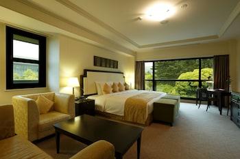 奈良、登大路ホテル奈良の写真