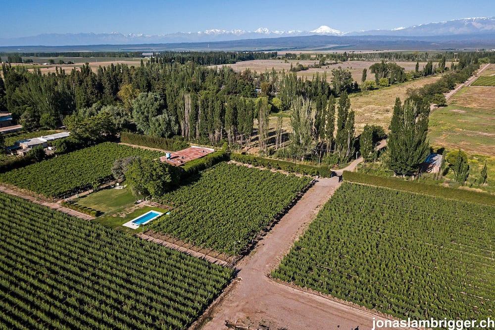 Pagerinto tipo dvivietis kambarys, vaizdas į vynuogyną - Panoraminis vaizdas