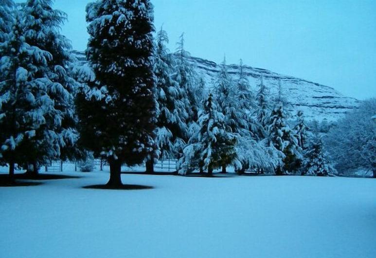 Silverhill Lodge, Elandskop, Naktsmītnes teritorija