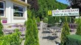 Pont-les-Moulins hotels,Pont-les-Moulins accommodatie, online Pont-les-Moulins hotel-reserveringen
