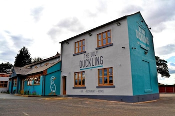 Picture of The Ugly Duckling in Telford