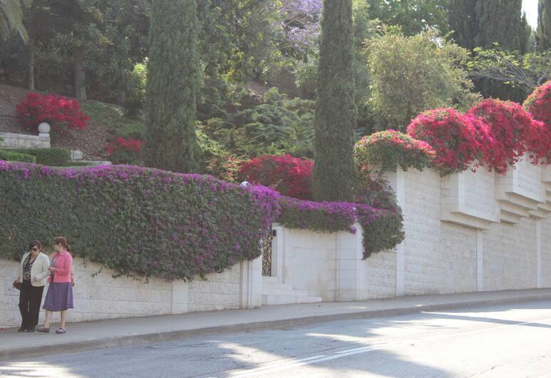 Care4U, Haifa, Ārpuse