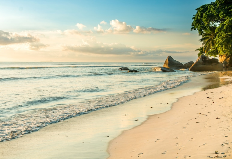 Tropical Hideaway, האי מאהה, חוף ים