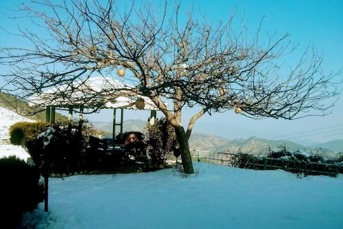 瑞士鄉村渡假村/
