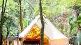 Hotel unweit  in Nordpazifikküste,Costa Rica,Hotelbuchung