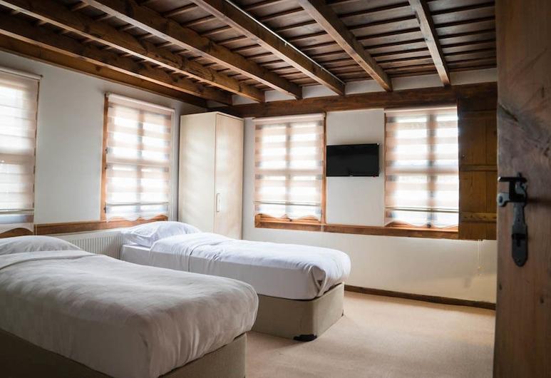 Matislar Konagi Butik Otel, Bolu, Habitación estándar con 2 camas individuales, para fumadores, vista a la ciudad, Habitación