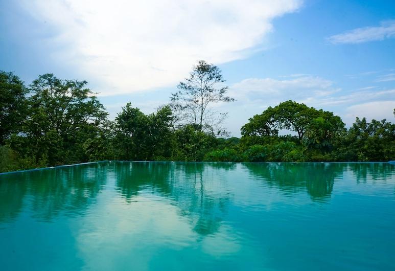 Winíka Alterra, Palenque