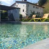 Trojlôžková izba typu Superior, vlastná kúpeľňa (El Plataner) - Bazén