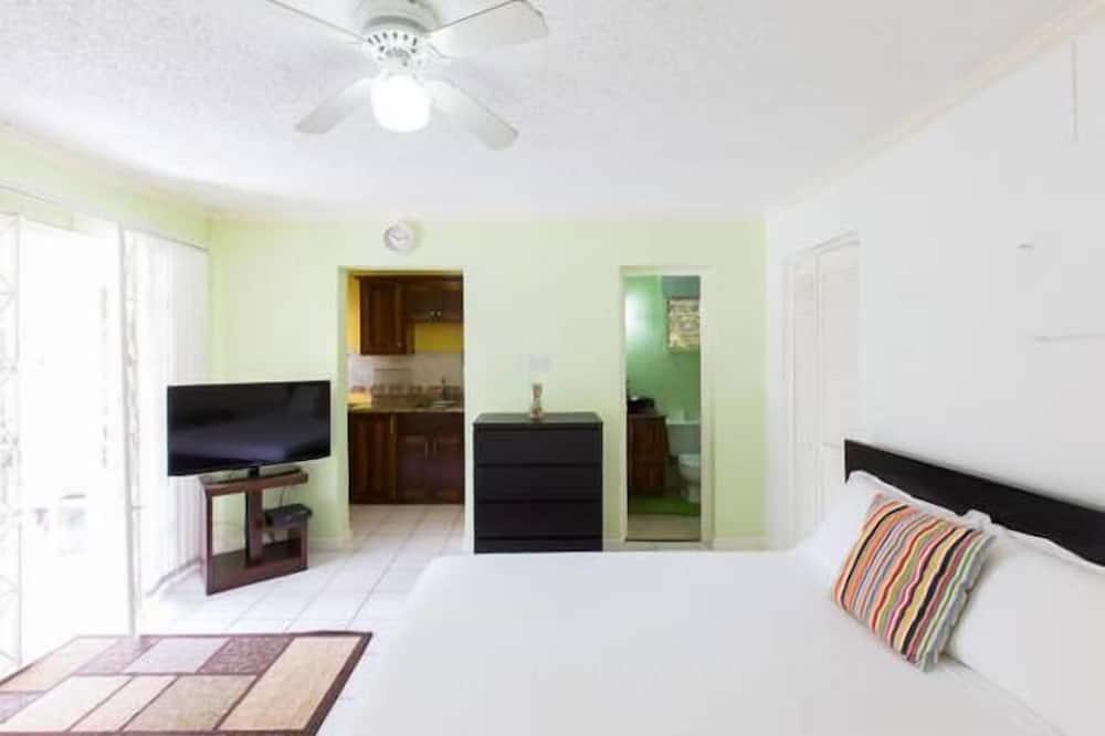 Suite estudio Premium, 1 cama Queen size, terraza, vista a la montaña - Habitación