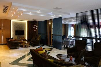 Nuotrauka: HOTEL FERRO, Bursa