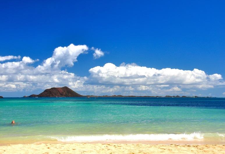 GBH Hostel Volcanic Beach, La Oliva, Plaj