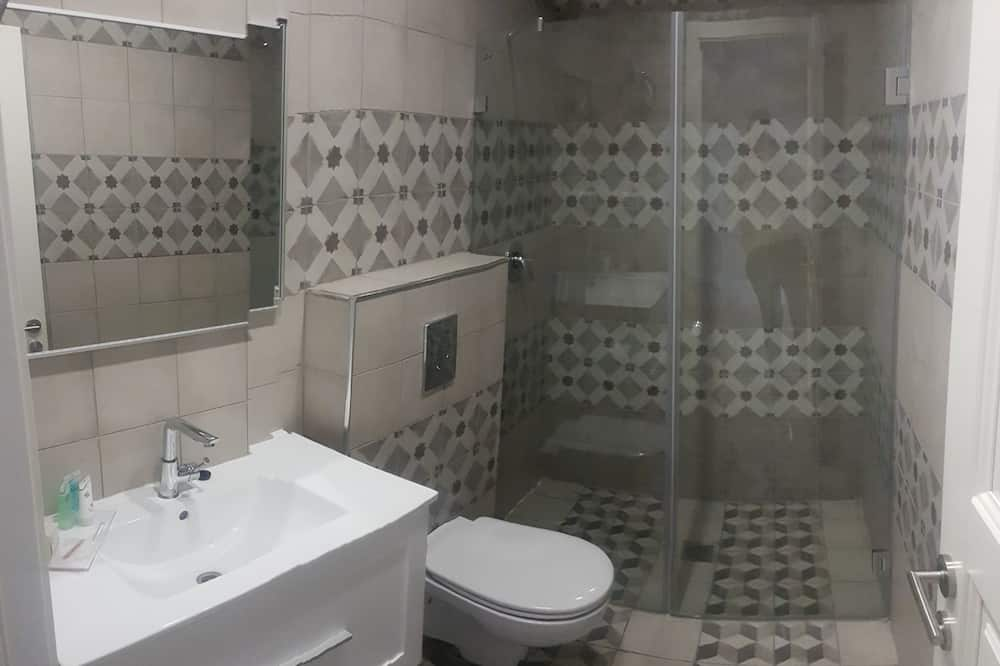 Basic Tek Büyük veya İki Ayrı Yataklı Oda - Banyo