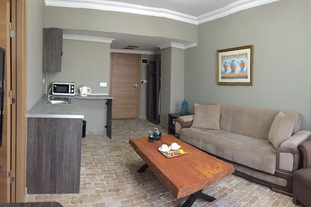 Superior Suite, 1 Double Bed - Living Area