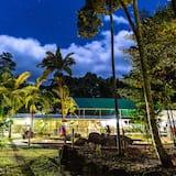 Felles sovesal – basic, for menn og kvinner, ikke-røyk, utsikt mot hage (Safari Hut) - Delt kjøkken