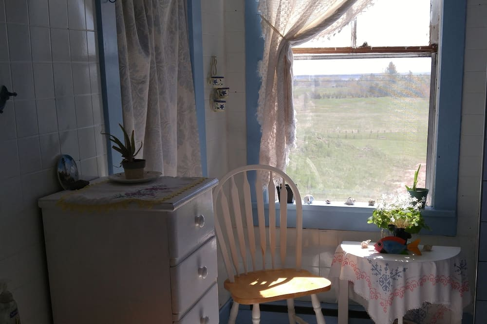 Standarta numurs, 1 divguļamā karalienes gulta, skats uz dārzu - Vannasistaba