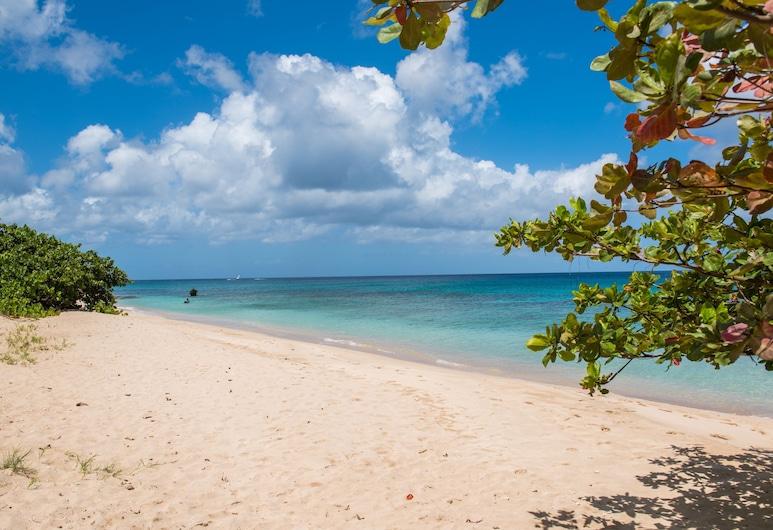 Ferienwohnung Direkt am Strand, Barbados, Exklusive Westküste, Speightstown, Strand