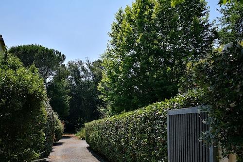 美しいヴィラと庭/