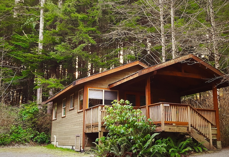 Rainforest Retreat- Bracken Cabin, Ucluelet