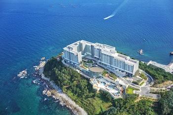 束草樂天束東市渡假飯店的相片