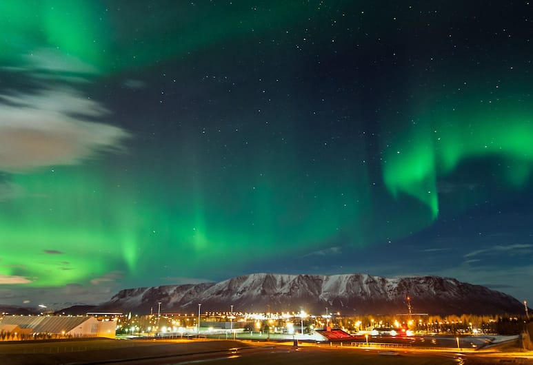 Bella Apartments & Rooms, Selfoss, View from Hotel