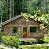 Forest Garden Cottage By The Ocean