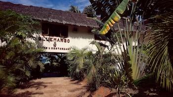 愛妮島藍色芒果客房及別墅的相片