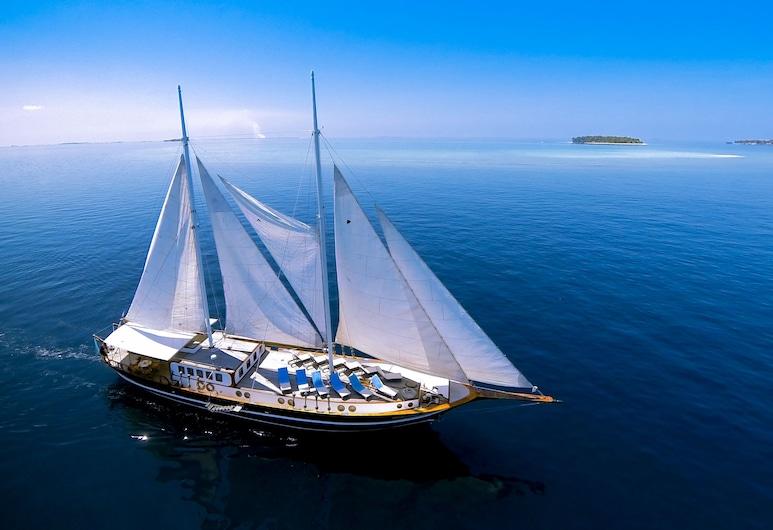 Dream Voyager, Malé