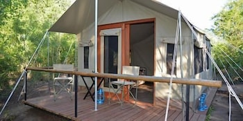 Picture of Wild Olive Tree Camp in Kruger National Park