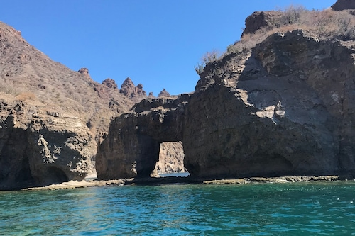 美しいコルテス海の魅力的なカサ/