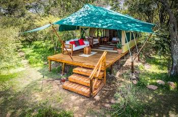 Picture of Losokwan Camp in Masai Mara