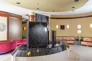 諾福克維珍尼亞海灘諾福克萬豪春季山丘套房酒店的圖片