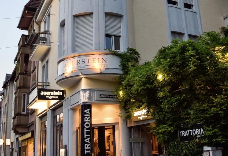 Hotel Auerstein, Heidelberg, Hótelinngangur
