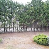Standard Room, 1 Double Bed - Garden View
