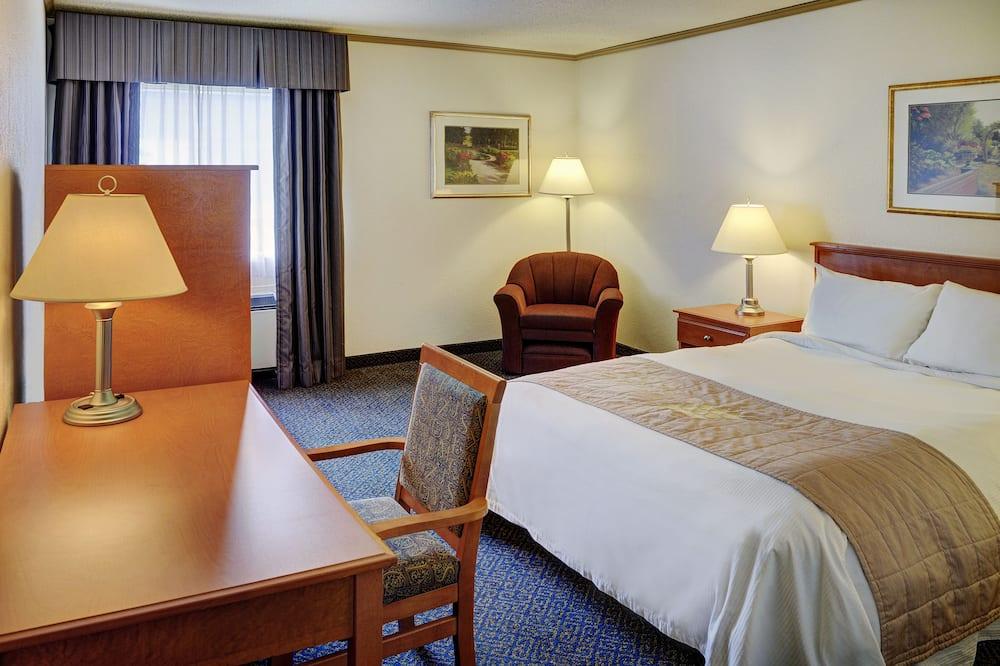 Habitación tradicional, 1 cama Queen size - Habitación