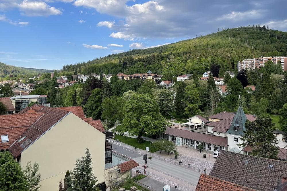 Standaard eenpersoonskamer, 1 twijfelaar - Uitzicht vanaf balkon
