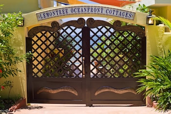 Fotografia do Lemontree Oceanfront Cottages em Rincon