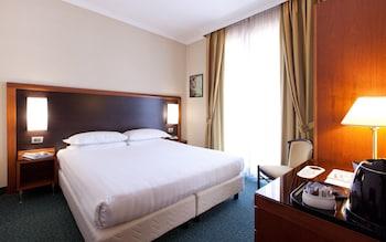 로마의 스무스 호텔 로마 웨스트 사진