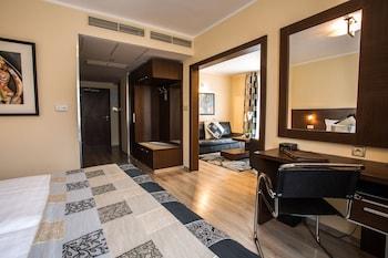 ภาพ Hotel Antares ใน บราติสลาวา (และบริเวณใกล้เคียง)