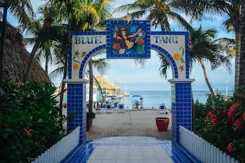Picture of Blue Tang Inn in San Pedro