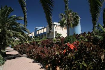 Picture of IFA Altamarena Hotel in Pajara