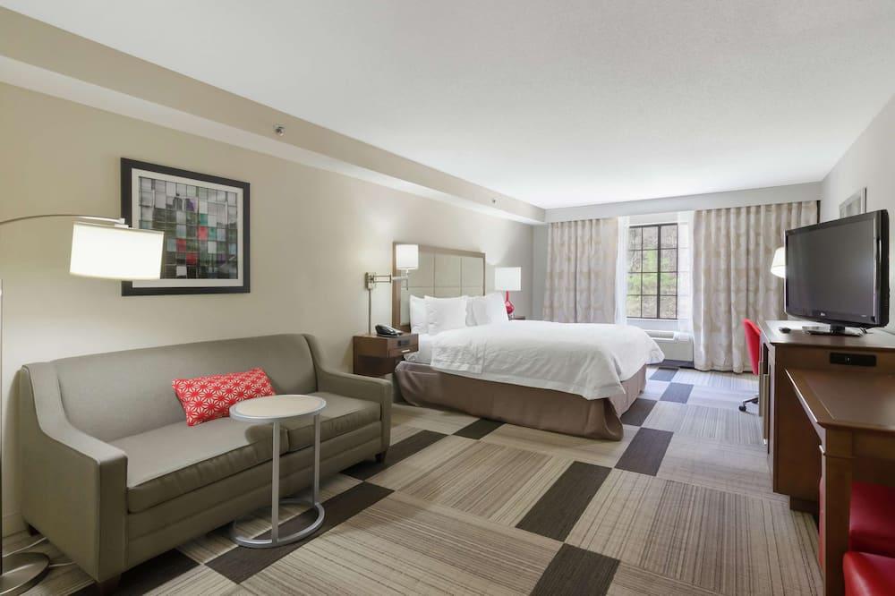 行政客房, 1 張特大雙人床和 1 張沙發床, 冰箱和微波爐 - 客廳