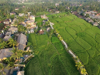 Picture of Wapa Di Ume Resort & Spa in Ubud