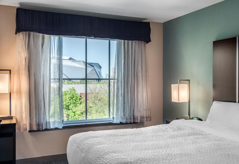 Clarion Inn & Suites Atlanta Downtown, Atlanta, Rom, 1 kingsize-seng, ikke-røyk, Utsikt fra gjesterommet