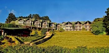 Foto del El Establo Mountain Hotel en Monteverde
