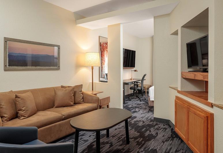 Fairfield Inn & Suites by Marriott San Angelo, San Angelo, Studio, 1 King Bed, Non Smoking, Guest Room